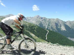 Mountain Biker by Mick Lissone