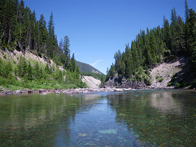Lake in Flathead National Forest