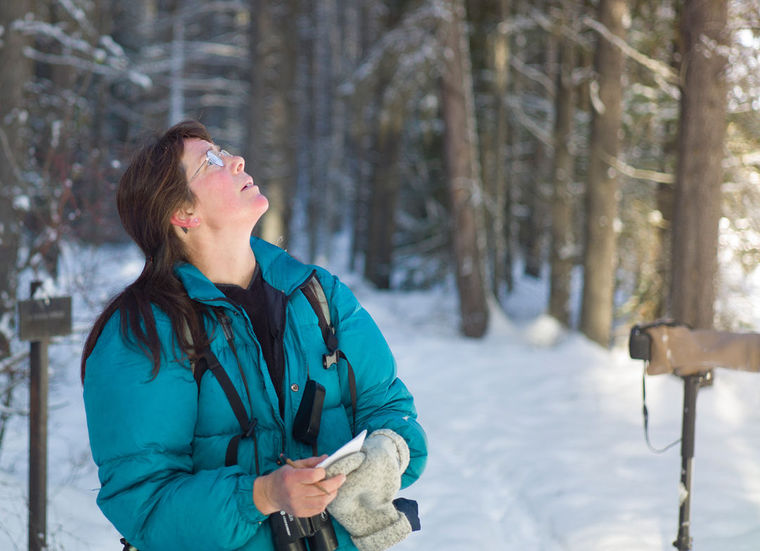 Biologist Lisa Bate counts birds during the annual Christmas bird count in Glacier in 2010.