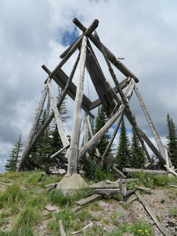 Coal Ridge - remains of old lookout - W. K. Walker