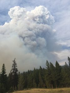 Wildfire Plume - USFS