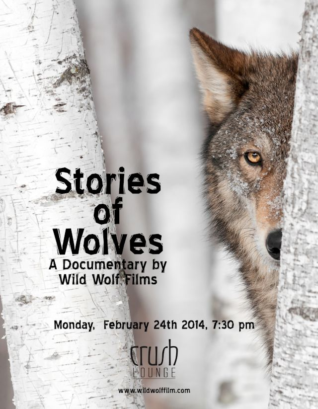Stories of Wolves film poster