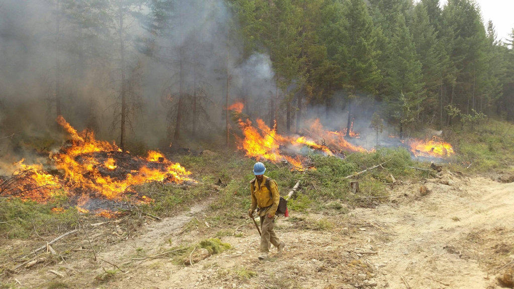 Flathead Hotshot on the Marston Fireline, Aug 23, 2015