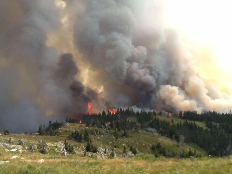 Reynolds Creek Fire burning on July 31, 2015