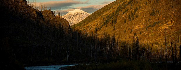 The Whitefish Range by Steve Gnam