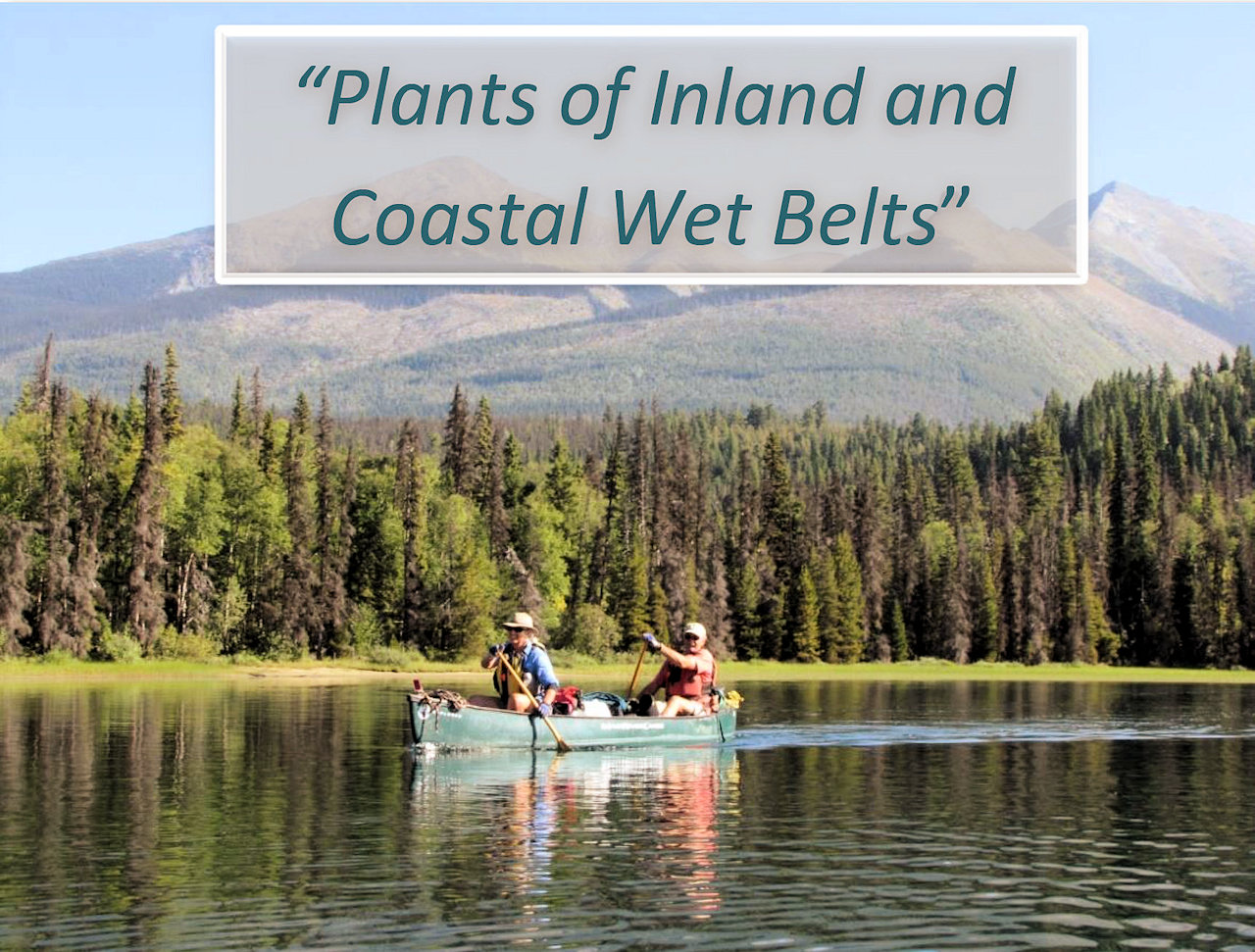 April 20, 2016 - Plants of Inland and Coastal Wet Belts