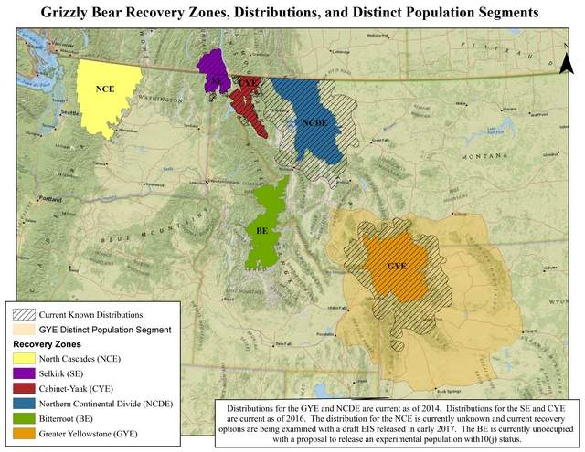 Grizzly bear recovery zones - US Fish and Wildlife Service