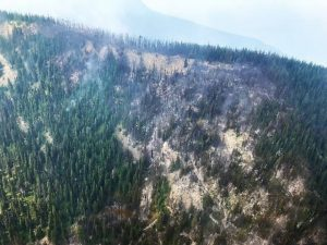 Ridge top burned by the Coal Ridge Fire, August 13, 2018 - USFS
