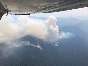 View of Coal Ridge Fire burning in the upper elevation of Coal Ridge, Aug 12, 2018 - USFS